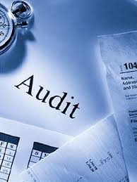 Income Audit
